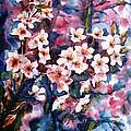 Spring Beauty by Zaira Dzhaubaeva
