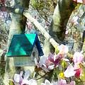 Spring - Birdhouse In Magnolia by Susan Savad