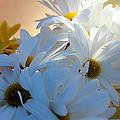 Spring Blooms by Lisa Jayne Konopka