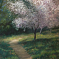 Spring Blossoms by Linda Preece