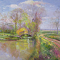 Spring Bridge by Timothy  Easton
