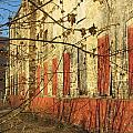 Spring Buds And Urban Decay 3 by Anita Burgermeister