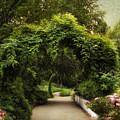Spring Canopy by Jessica Jenney