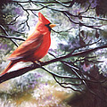 Spring Cardinal by Nicoletta Filarski