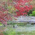 Spring Color Over Japanese Garden Bridge by Carol Groenen