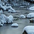 Spring Creek by Dan Hefle
