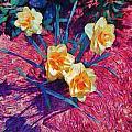 Spring Daffodils On Red - Horizontal by Lyn Voytershark