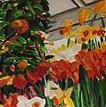 Spring Flowers by Richard Nowak