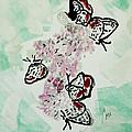 Spring Flutter by Cori Solomon