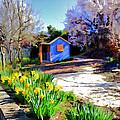Spring Garden by Paul Svensen