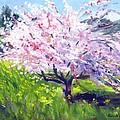 Spring Glory by Karin  Leonard