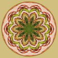 Spring Grasses Mandala by Bill Barber