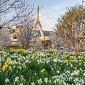 Spring In Boston by Susan Cole Kelly