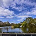 Spring In Central Park by Randall Bertrand