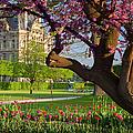 Spring In Paris by Brian Jannsen