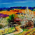 spring in Sechery by Pol Ledent