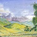 Spring In The Corona Hills by Dan Redmon
