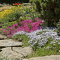 Spring In The Garden Dsc03678 by Greg Kluempers
