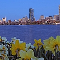 Spring Into Boston by Juergen Roth