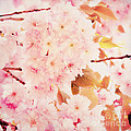Spring Love by Angela Doelling AD DESIGN Photo and PhotoArt