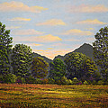 Spring Meadow At Sutter Buttes by Frank Wilson