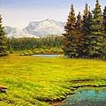 Spring Meadow by Chris Skinner
