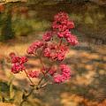 Spring Mignonette Flower by Angela Stanton