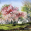Spring Morning by Barbara Jewell