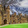 Spring On The Law Quad by Pat Cook