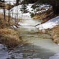 Spring Overflow by Gary Benson