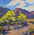 Spring Palo Verde by Diane McClary