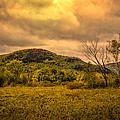 Spring Rain - White Mountains -maine by Bob Orsillo