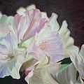 Spring Rhodys by Nancy Jolley