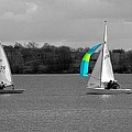 Spring Sailing by Jeremy Hayden
