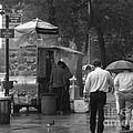 Spring Shower - Rainy Day In New York by Miriam Danar