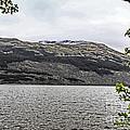 Spring Snow In The Highlands by Elvis Vaughn