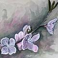 Spring Splendor by Rick Huotari