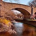 Spring - Springtime In Newark by Mike Savad