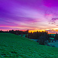 Spring Sunrise by Andre Distel