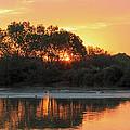 Spring Sunrise Gilbert Arizona by Peri Ann Taylor
