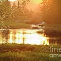 Spring Sunset by Alana Ranney