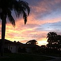 Spring Sunset by Melissa Darnell Glowacki
