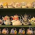 Spring Teapots  by Nancy Patterson