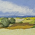 Spring Valley by Allan P Friedlander