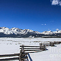 Spring View Of The Sawtooth Mountains by Robert Bales