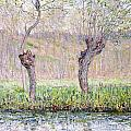Spring Willows by Claude Monet
