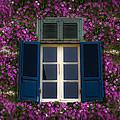 Spring Window by Radoslav Nedelchev