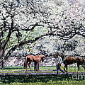 Springtime At Keeneland by Thomas Allen Pauly