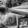Springtime Canoe Bw by Carolyn Marshall