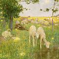 Springtime by Edward Stott